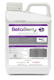 betaberry envase